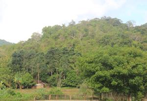 Situs Solonggodu