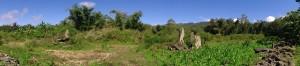 Situs Megalitik Kampung Wogo Lama Golewa
