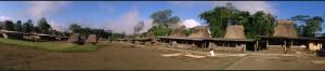 kampung wogo baru