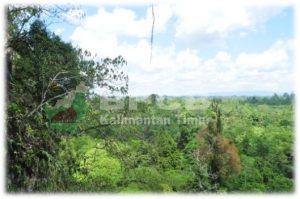 Foto. Lingkungan Makro & Mikro sekitar mulut Gua Tamrin