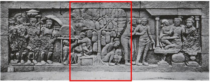 Nangka Balai Konservasi Borobudur