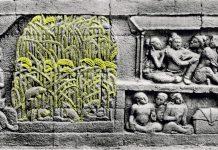 Karmawibhangga seri 0 65, Image Krom and van Erp, 1920