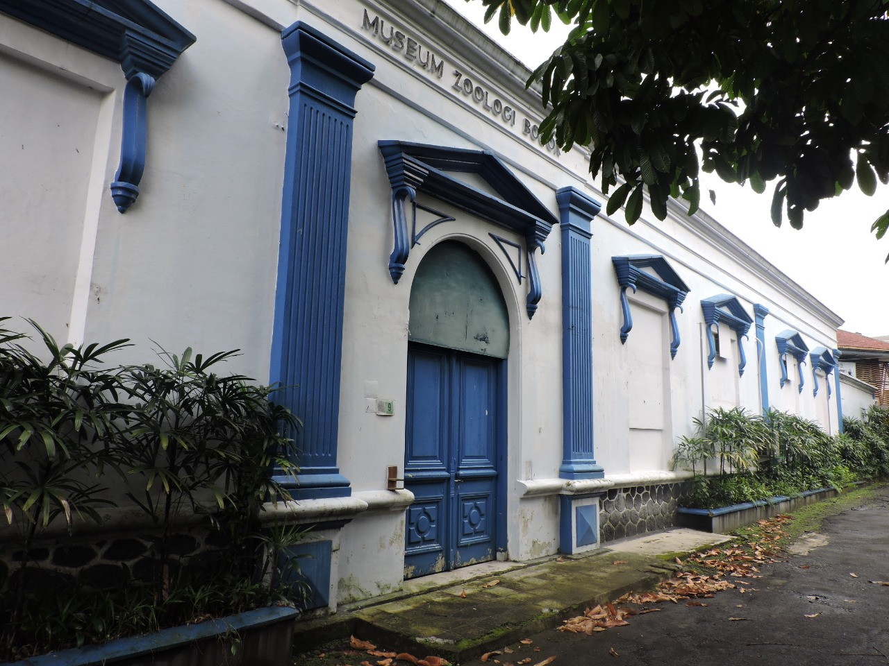 Read more about the article BPCB Provinsi Banten Lakukan Penggambaran Bangunan Museum Zoologi Bogor