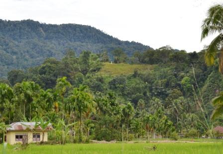 Situs Benteng Bukit Takjadi