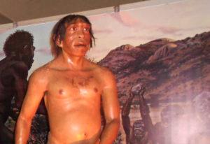 Homo Erectus (meniti Jejak-jejak Peradaban)