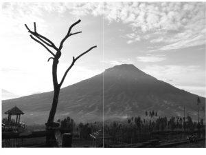 Read more about the article Gunung Bagian III (Peninggalan Arkeologi di Pereng Wukir Susundara-Sumving)
