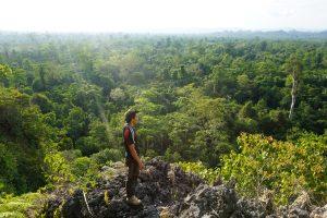 Read more about the article Ceruk Keboboh Atas, Kawasan Karst Sangkulirang-Mangkalihat