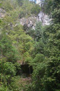 Read more about the article Gua Mentis, Kawasan Karst Sangkulirang- Mangkalihat