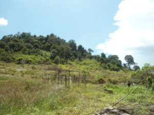 Situs Gunung Totek