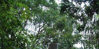 Monumen Bersejarah Tugu pembantaian