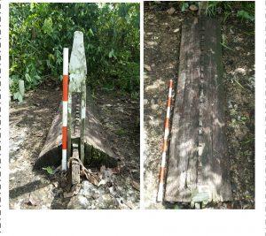 Read more about the article Situs Tanjung Hulu, Kecamatan Lumbis, Kabupaten Nunukan, Provinsi Kalimantan Utara