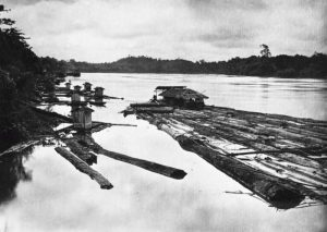 Read more about the article Kilas Balik Kedatang dan Hegemoni Belanda di Bumi Kalimantan