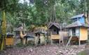 Read more about the article Batu Banama