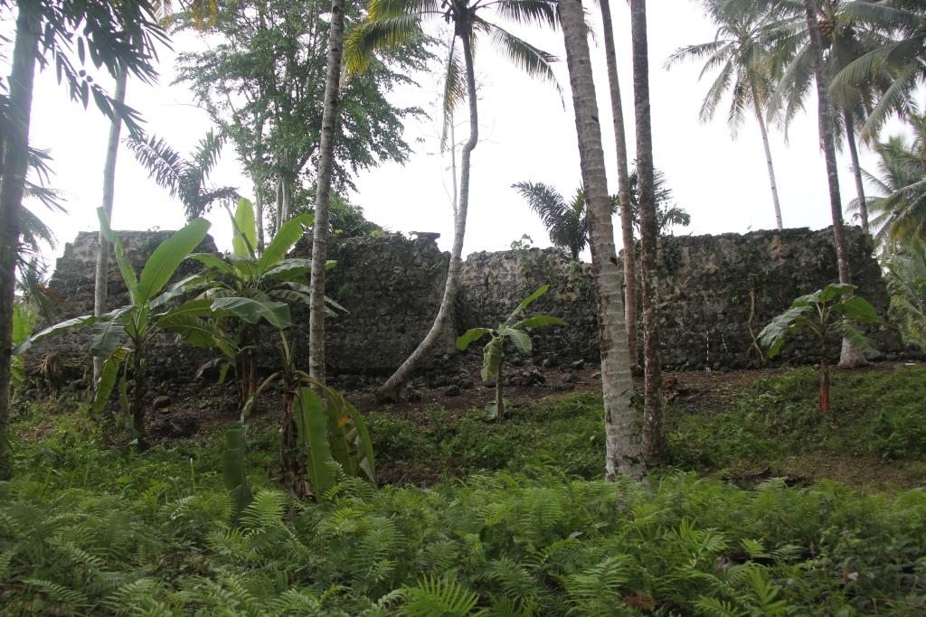 Read more about the article Observasi Keterawatan Benteng Saboga