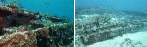 Read more about the article Potensi Cagar Budaya Bawah Air di Desa Rorasa
