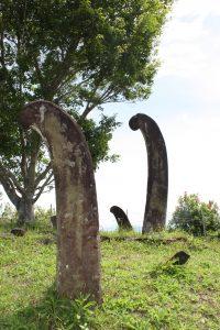 Read more about the article Situs Mejan Tinggi dalam Keberlanjutan Tradisi Megalitik-Budaya Islam