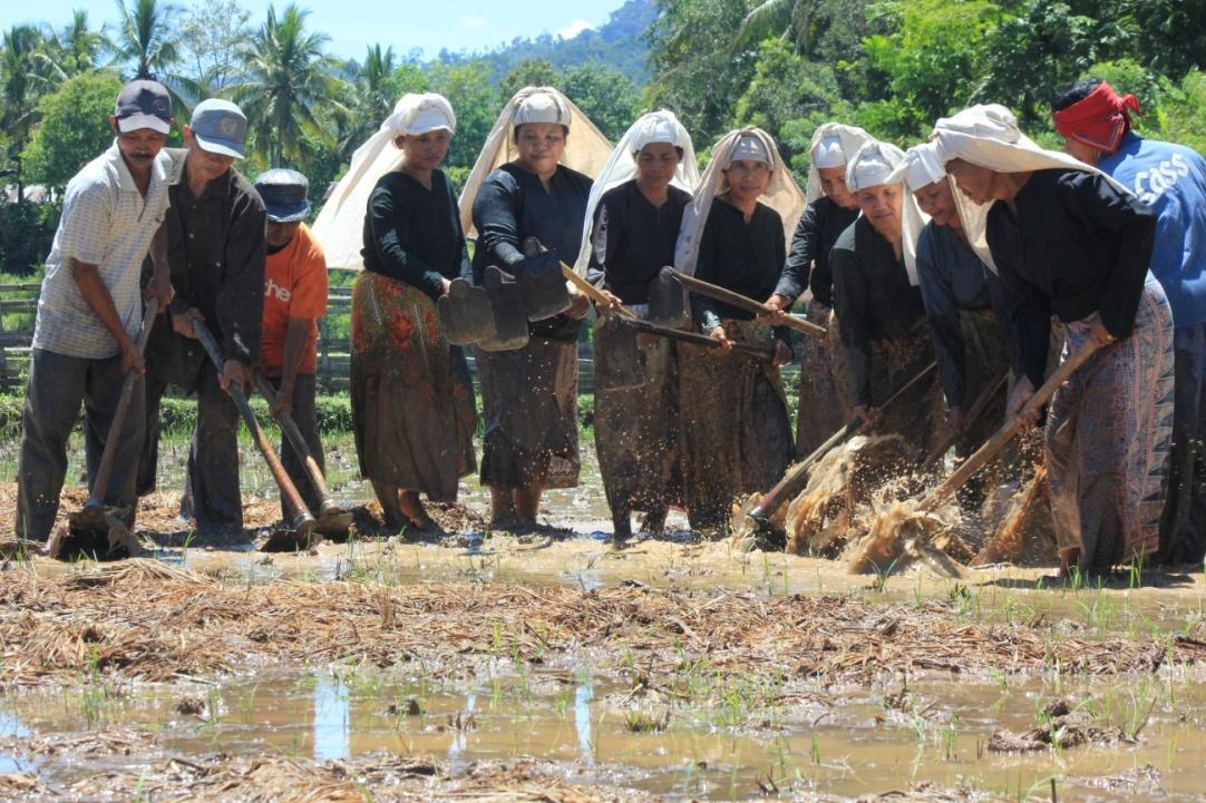 Read more about the article Wajah Minangkabau di Perkampungan Adat Nagari Sijunjung