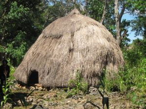 Read more about the article Ume Bubu: Simbol Perbedaan Kedudukan Laki-Laki dan Perempuan Di Tanah Timor