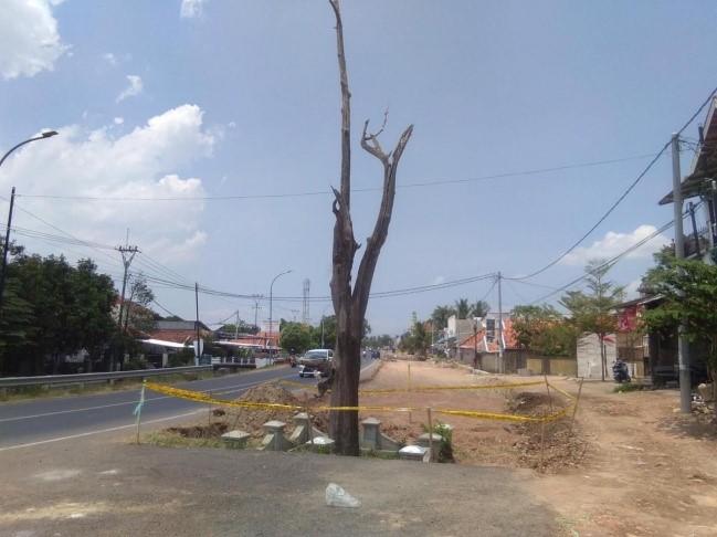 Read more about the article Mitos Pohon keramat di Kertajati
