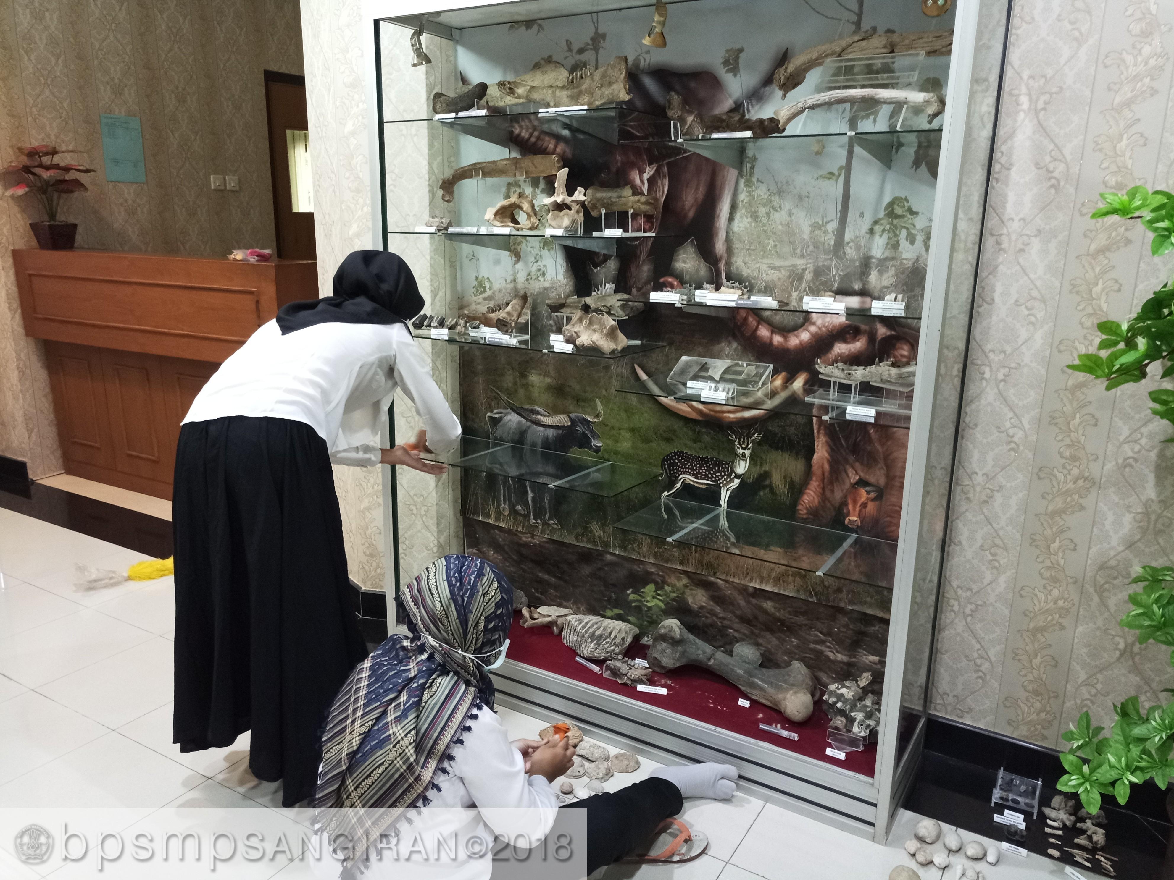 Read more about the article Pembersihan Koleksi Rutin Untuk Perawatan Fosil