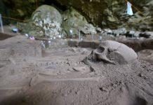 Rangka Manusia Prasejarah. Apakah dia orang Indonesia asli?