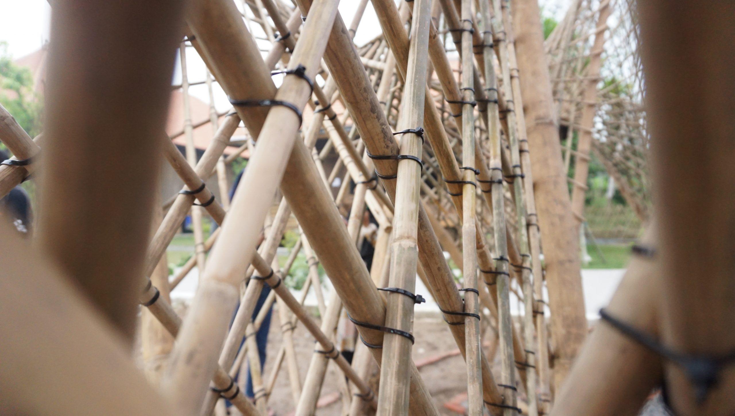 Read more about the article Dari Tubaba untuk Dunia